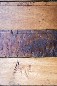 Acabados en madera crea un ambiente cálido